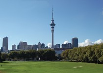 team-building-auckland