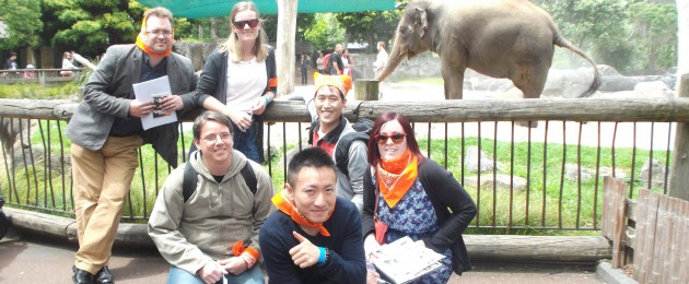Team Up Events, Team Building at the Zoo,